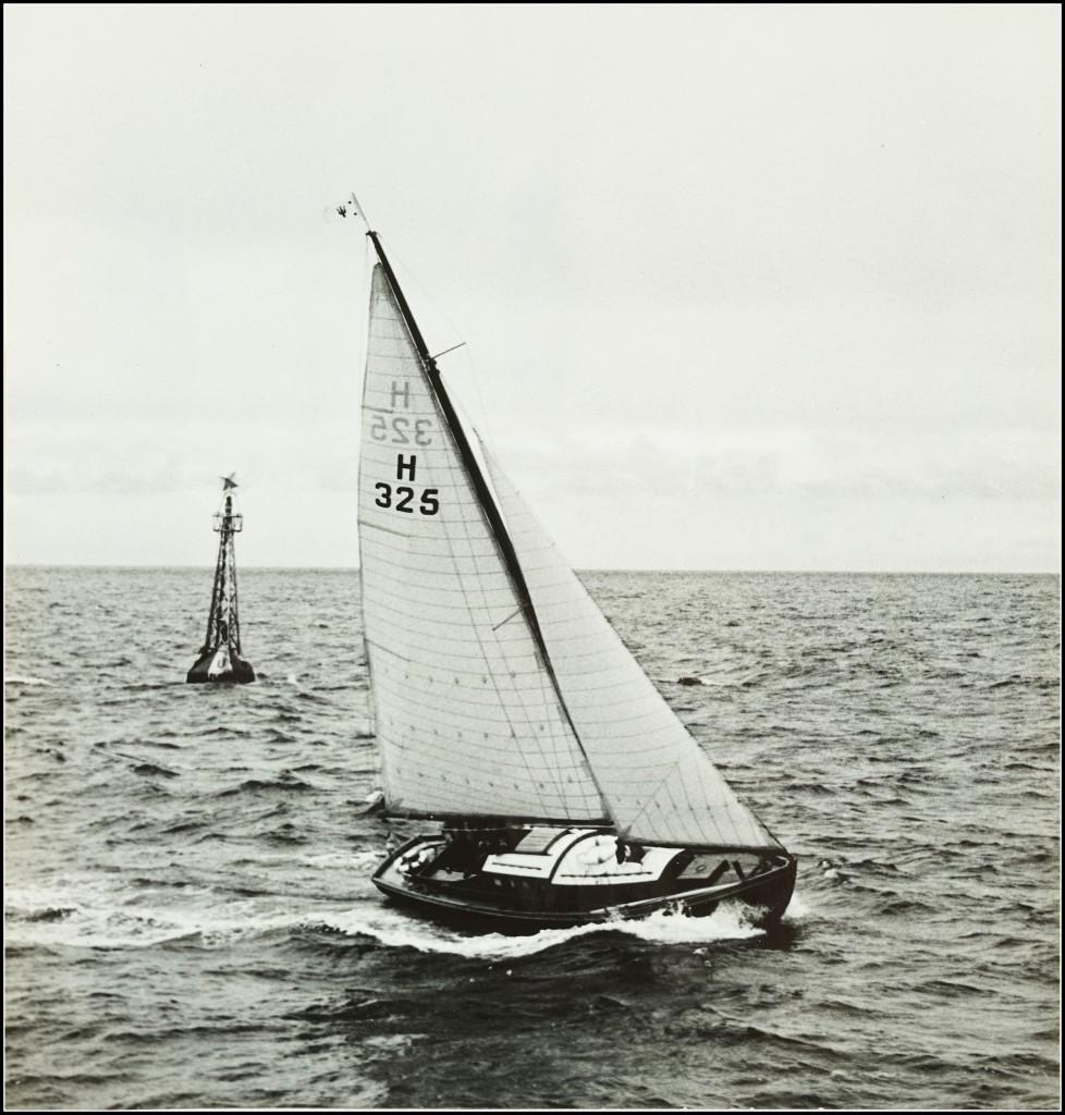 DSC01655-978x1024